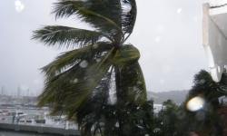 karib2010v0054