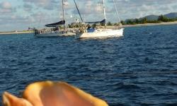 Sandy-Island