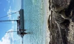 cuba-hajo-tengerpart