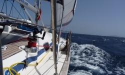 Tengeri hajóvezetői vizsga