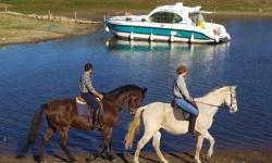 portugal-chevaux