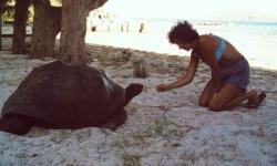 seycurieuse-seychelles