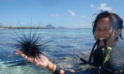 exploration-jardin-de-corail-tahaa